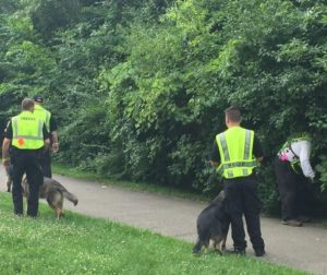 Investigators search for evidence in Hines Park